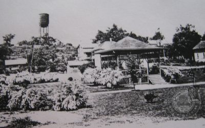 Forgotten Places: Laurel Park